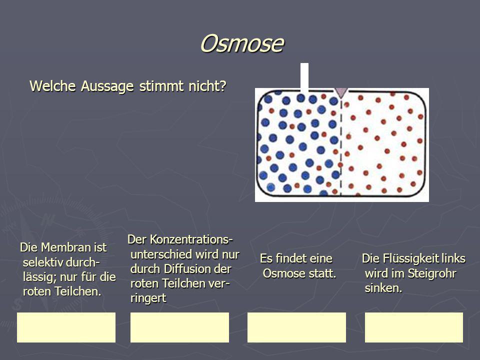 Osmose Welche Aussage stimmt nicht Der Konzentrations-unterschied wird nur durch Diffusion der roten Teilchen ver-ringert.