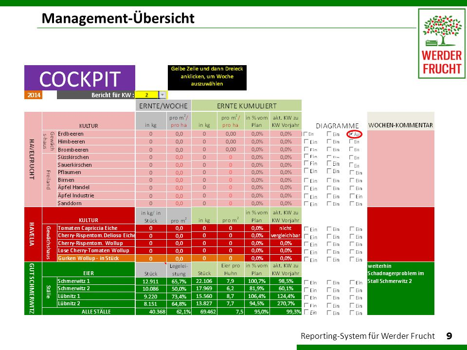 Management-Übersicht