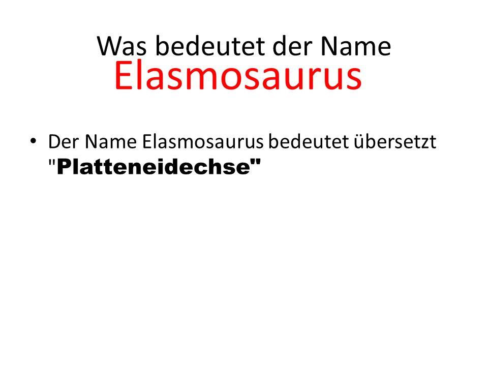 Was bedeutet der Name Der Name Elasmosaurus bedeutet übersetzt Platteneidechse