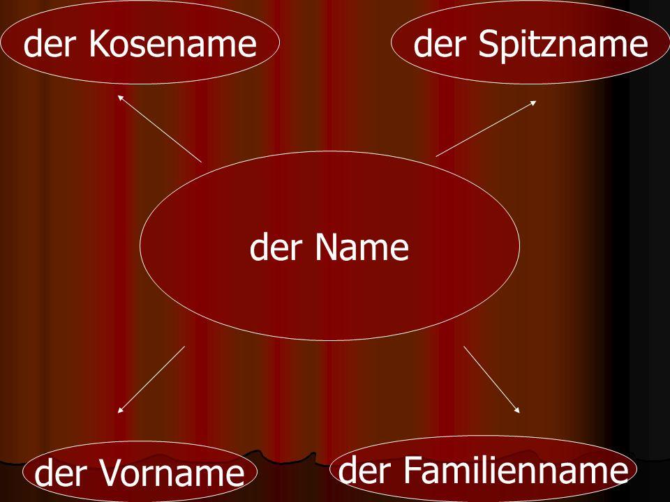 der Kosename der Spitzname der Name der Familienname der Vorname