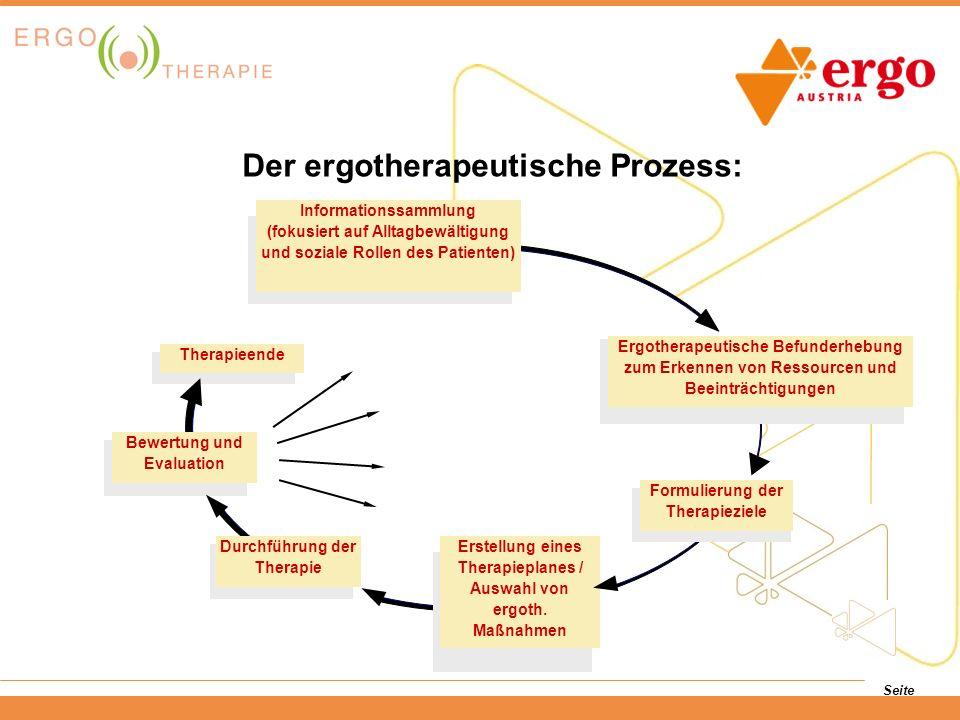 Der ergotherapeutische Prozess: