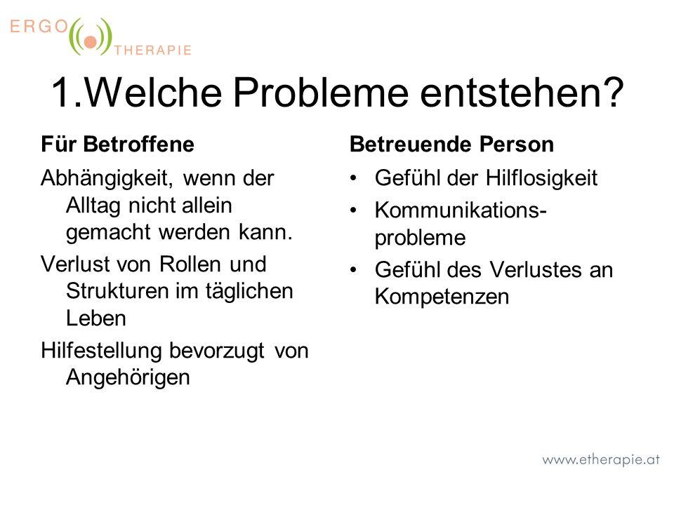 1.Welche Probleme entstehen