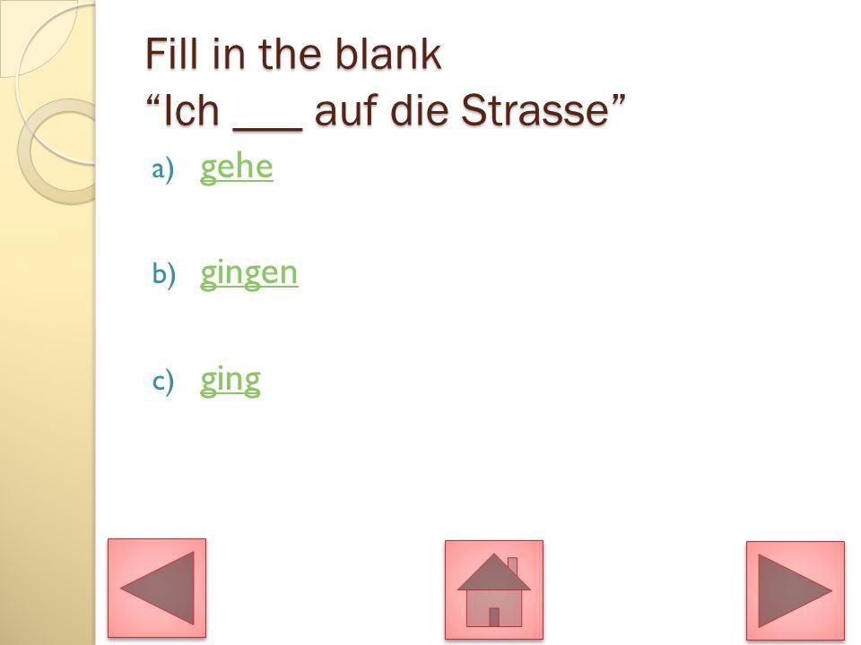 Fill in the blank Ich ___ auf die Strasse