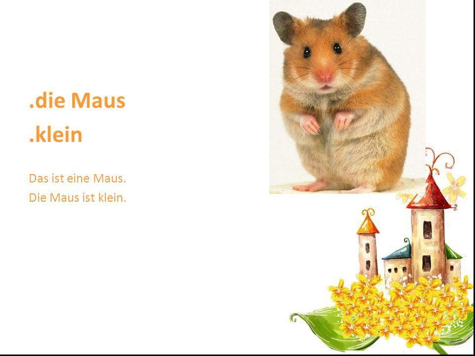 .die Maus .klein Das ist eine Maus. Die Maus ist klein.