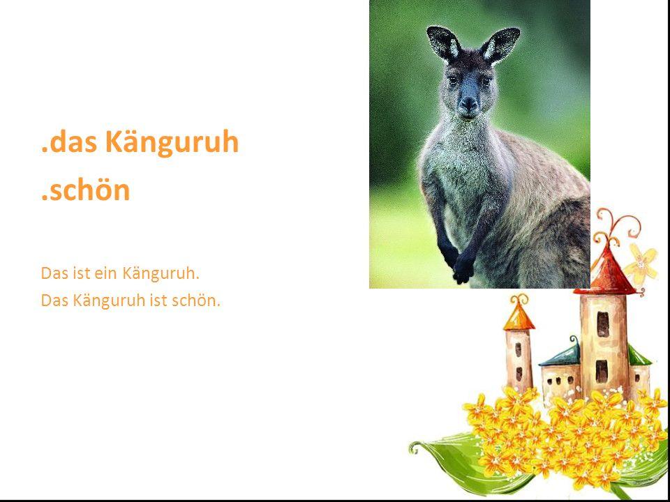 .das Känguruh .schön Das ist ein Känguruh. Das Känguruh ist schön.