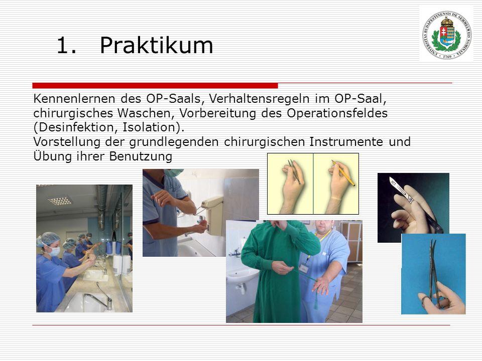 Praktikum Kennenlernen des OP-Saals, Verhaltensregeln im OP-Saal, chirurgisches Waschen, Vorbereitung des Operationsfeldes (Desinfektion, Isolation).