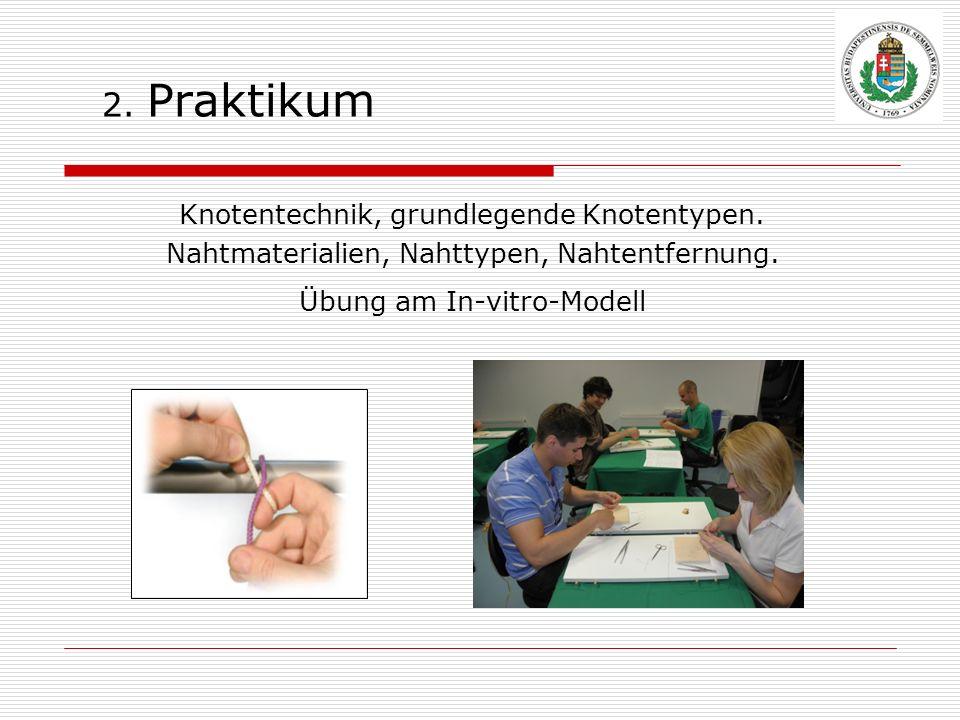 2. Praktikum Knotentechnik, grundlegende Knotentypen.