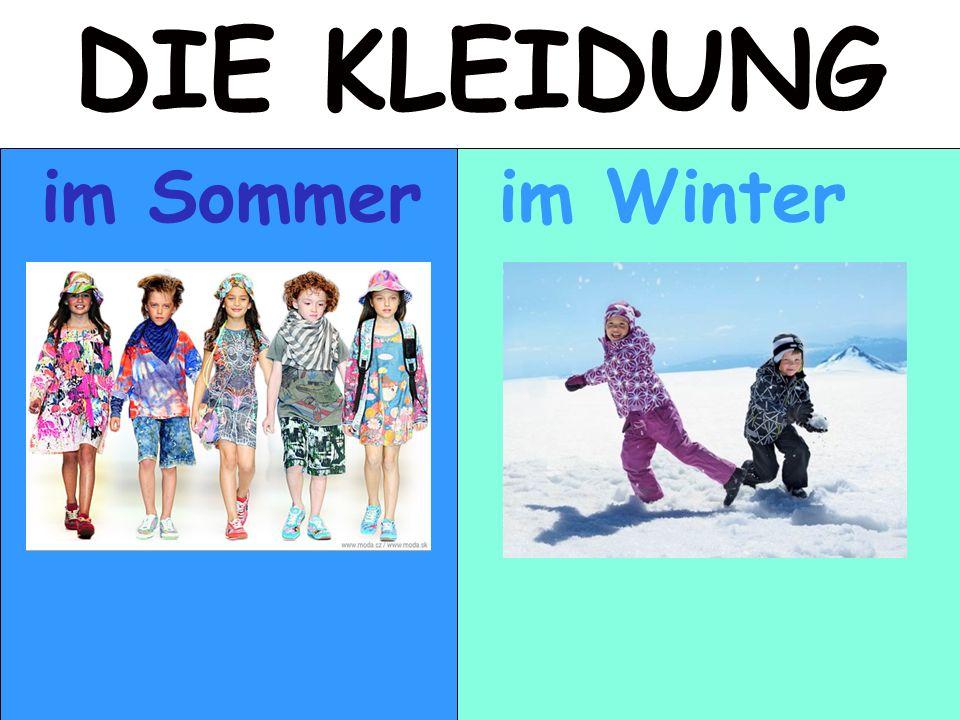 DIE KLEIDUNG im Sommer im Winter