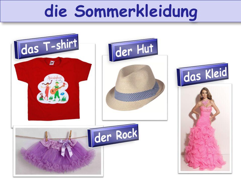 die Sommerkleidung das T-shirt der Hut das Kleid der Rock