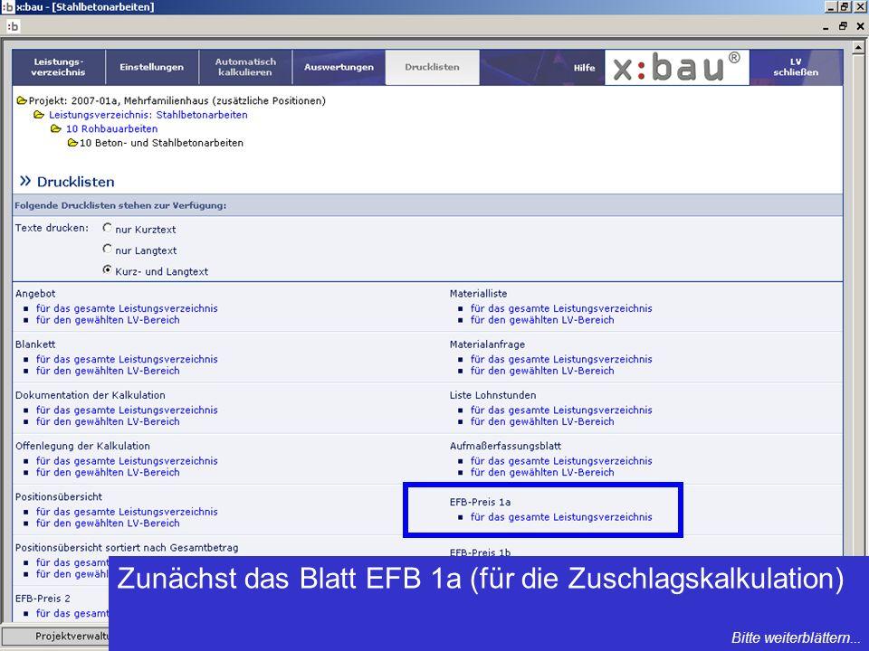 Zunächst das Blatt EFB 1a (für die Zuschlagskalkulation)