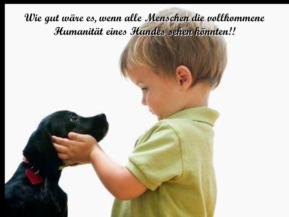 Wie gut wäre es, wenn alle Menschen die vollkommene Humanität eines Hundes sehen könnten!!