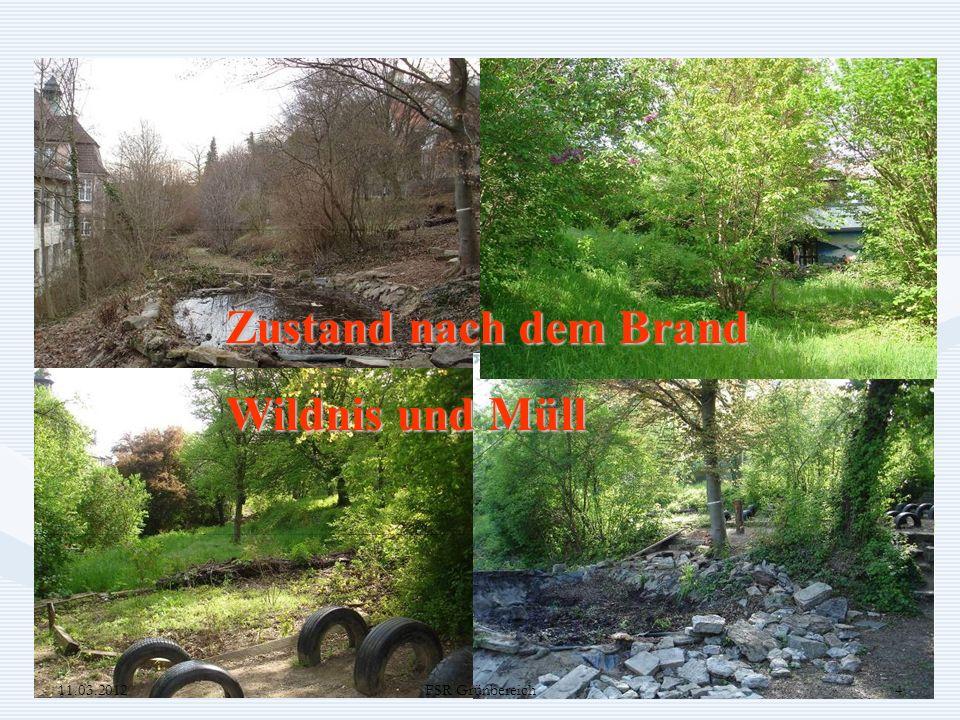 Zustand nach dem Brand Wildnis und Müll FSR Grundschule 11.03.2012