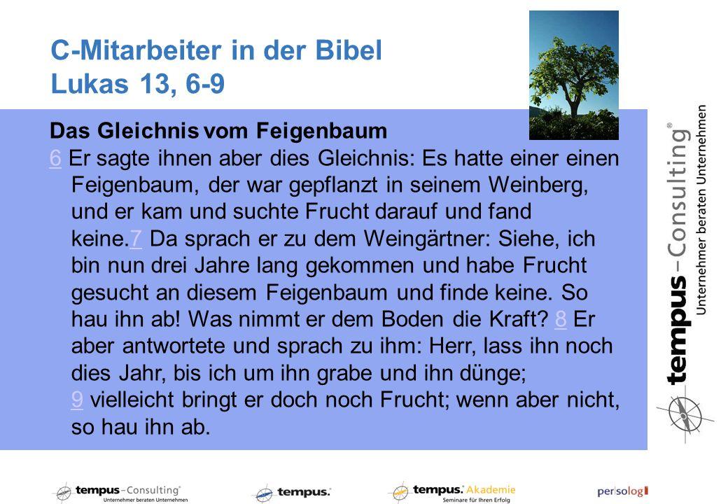 C-Mitarbeiter in der Bibel Lukas 13, 6-9