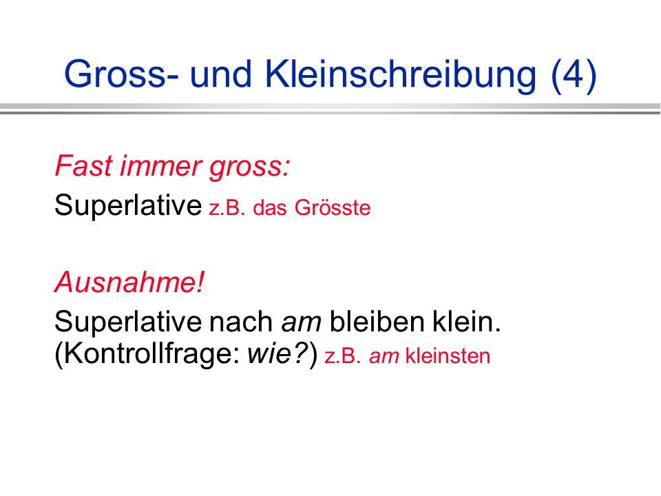 Gross- und Kleinschreibung (4)
