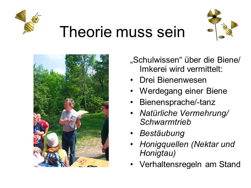 """Theorie muss sein """"Schulwissen über die Biene/ Imkerei wird vermittelt: Drei Bienenwesen. Werdegang einer Biene."""