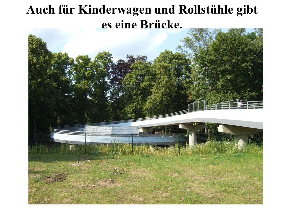Auch für Kinderwagen und Rollstühle gibt es eine Brücke.