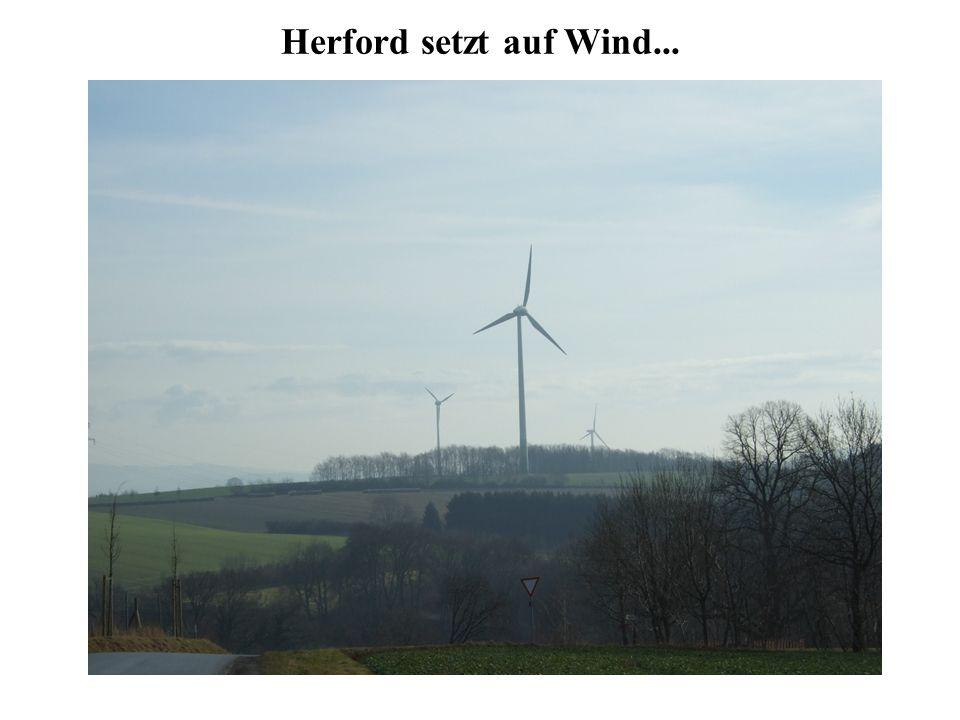 Herford setzt auf Wind...