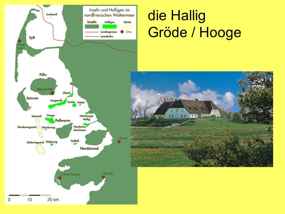 die Hallig Gröde / Hooge