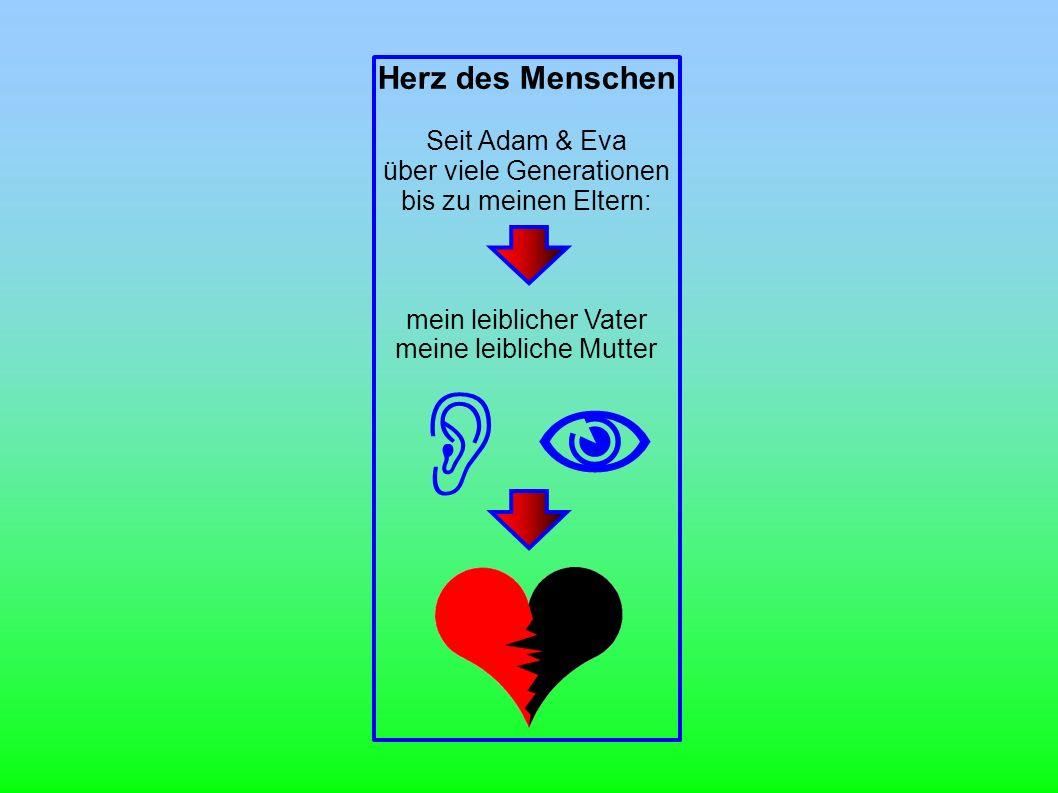  Herz des Menschen Seit Adam & Eva über viele Generationen