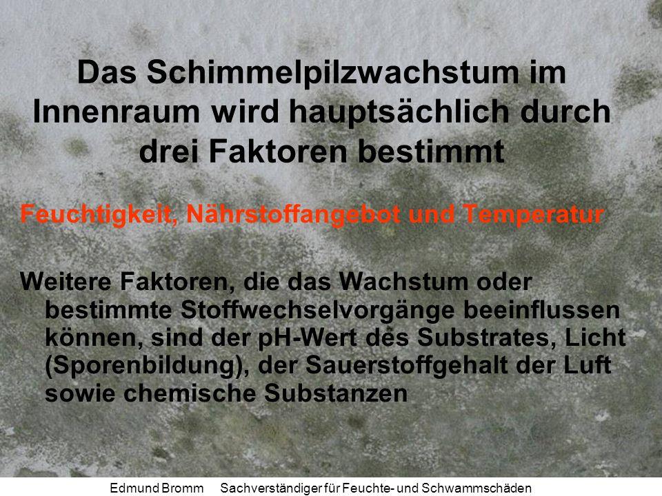 Edmund Bromm Sachverständiger für Feuchte- und Schwammschäden