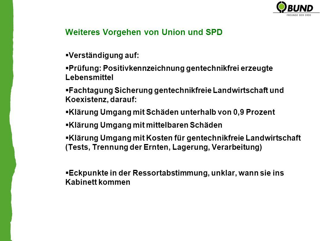 Weiteres Vorgehen von Union und SPD