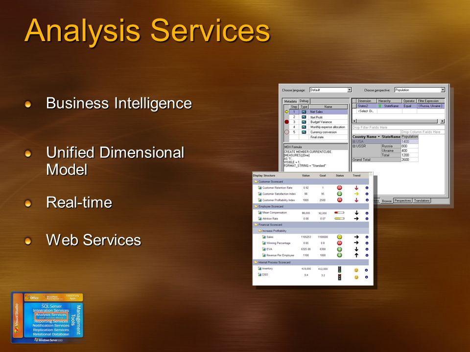Analysis Services Business Intelligence Unified Dimensional Model