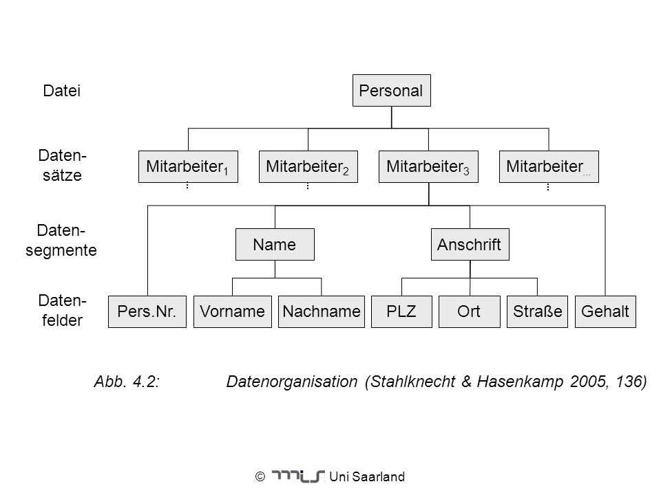 Abb. 4.2: Datenorganisation (Stahlknecht & Hasenkamp 2005, 136)