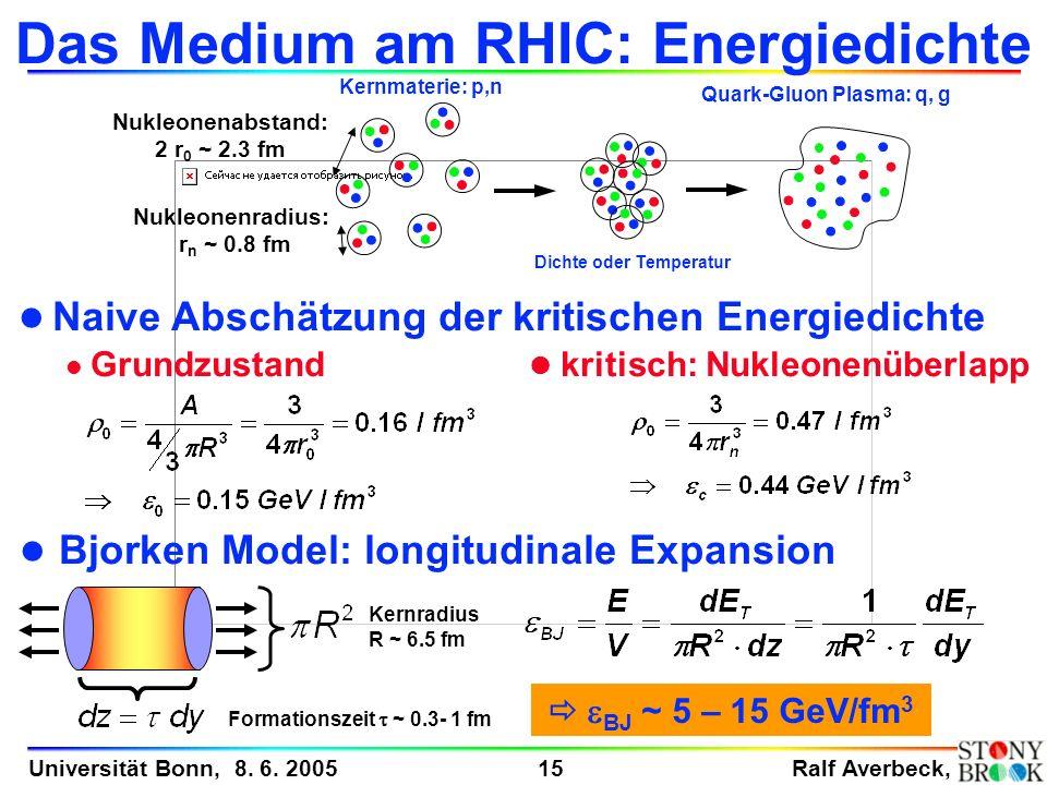 Das Medium am RHIC: Energiedichte