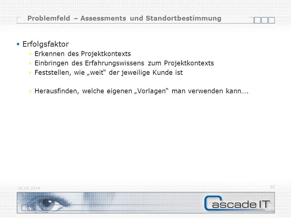 Problemfeld – Assessments und Standortbestimmung