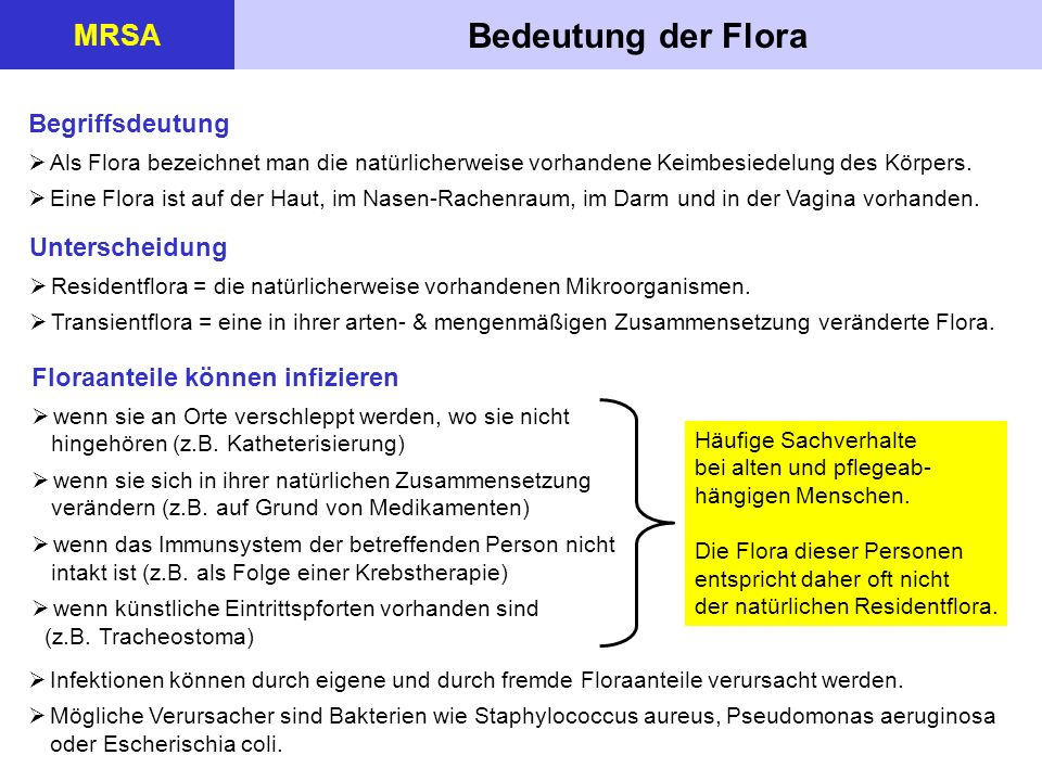 Bedeutung der Flora MRSA Begriffsdeutung Unterscheidung