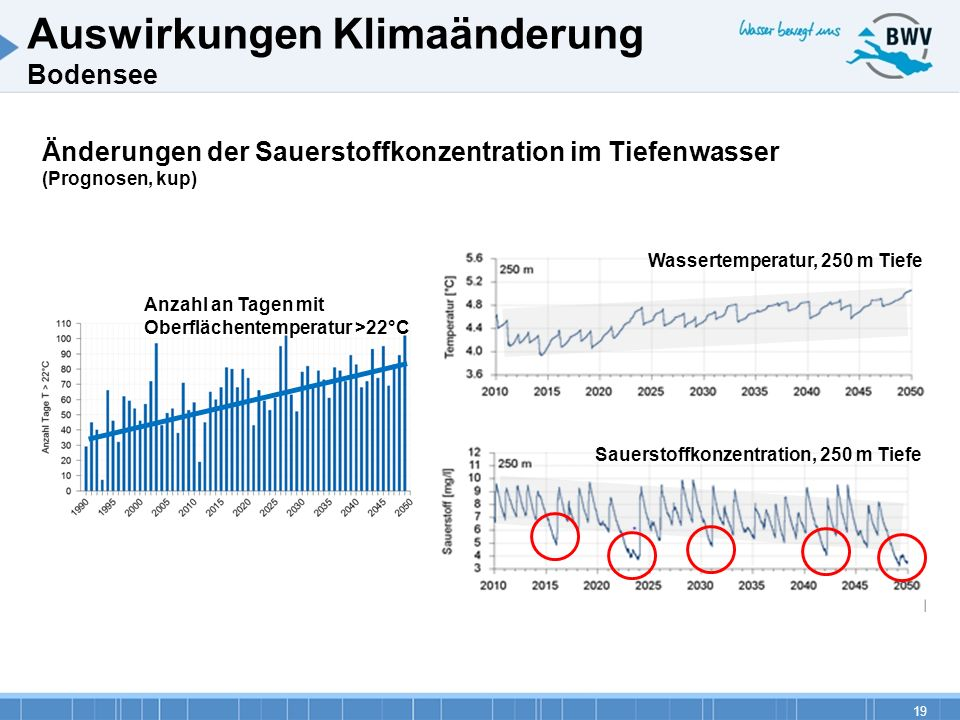 Auswirkungen Klimaänderung Bodensee