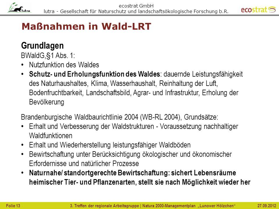 Grundlagen BWaldG,§1 Abs. 1:
