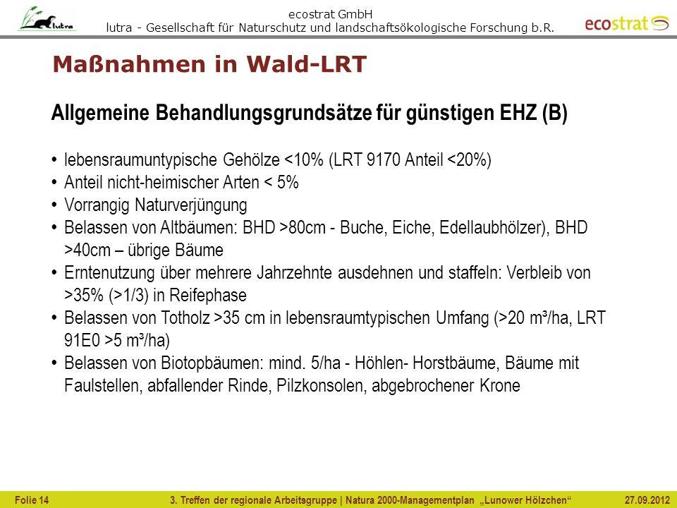 Allgemeine Behandlungsgrundsätze für günstigen EHZ (B)