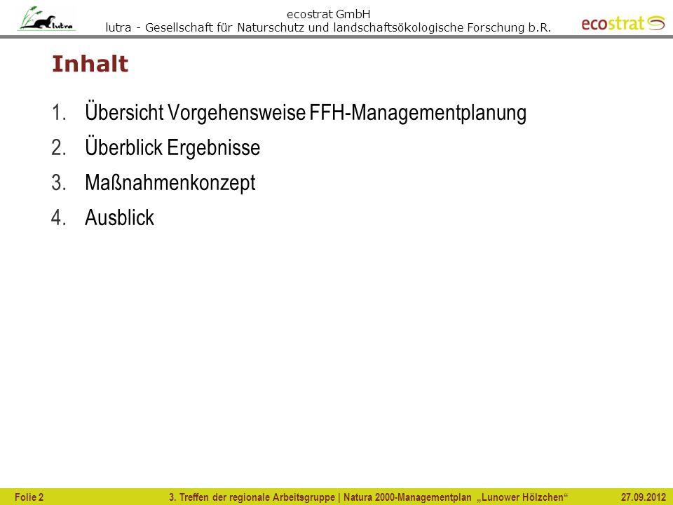 Übersicht Vorgehensweise FFH-Managementplanung Überblick Ergebnisse