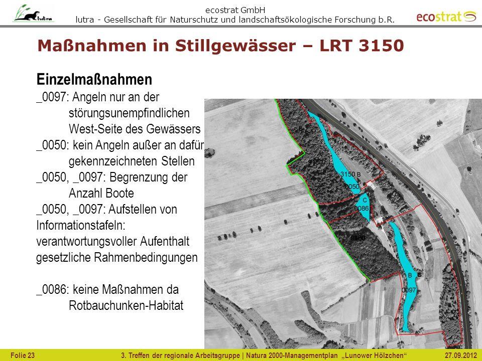 Maßnahmen in Stillgewässer – LRT 3150