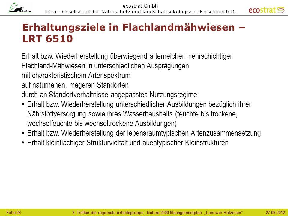 Erhaltungsziele in Flachlandmähwiesen – LRT 6510