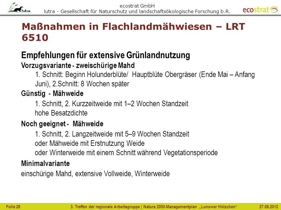 Maßnahmen in Flachlandmähwiesen – LRT 6510
