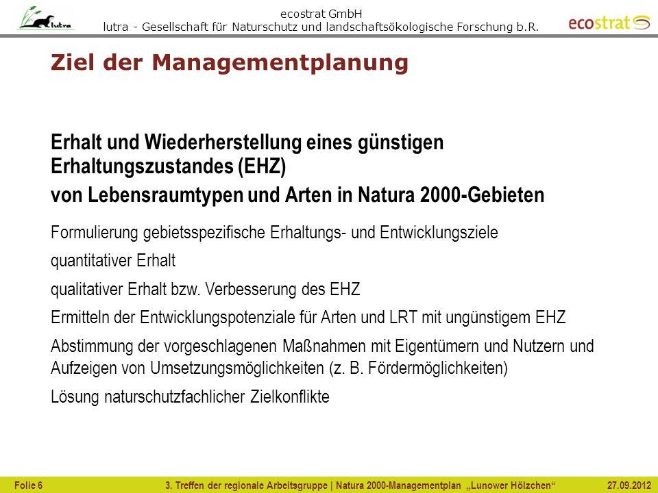 Ziel der Managementplanung