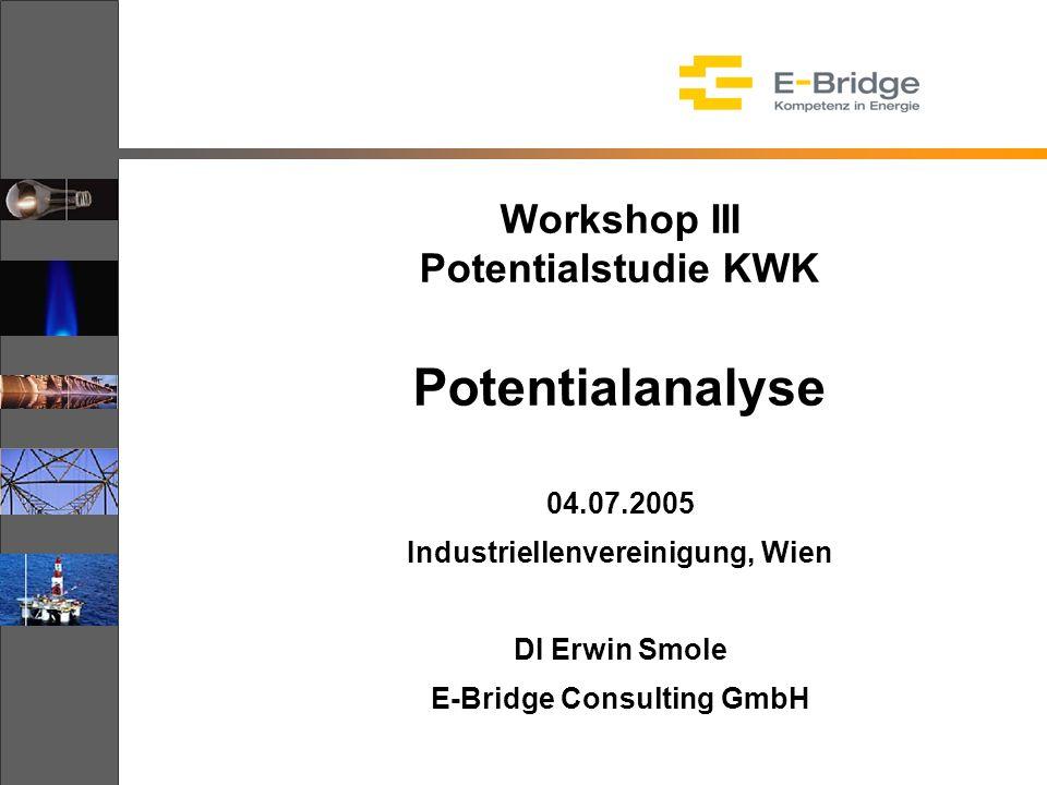 Workshop III Potentialstudie KWK Potentialanalyse