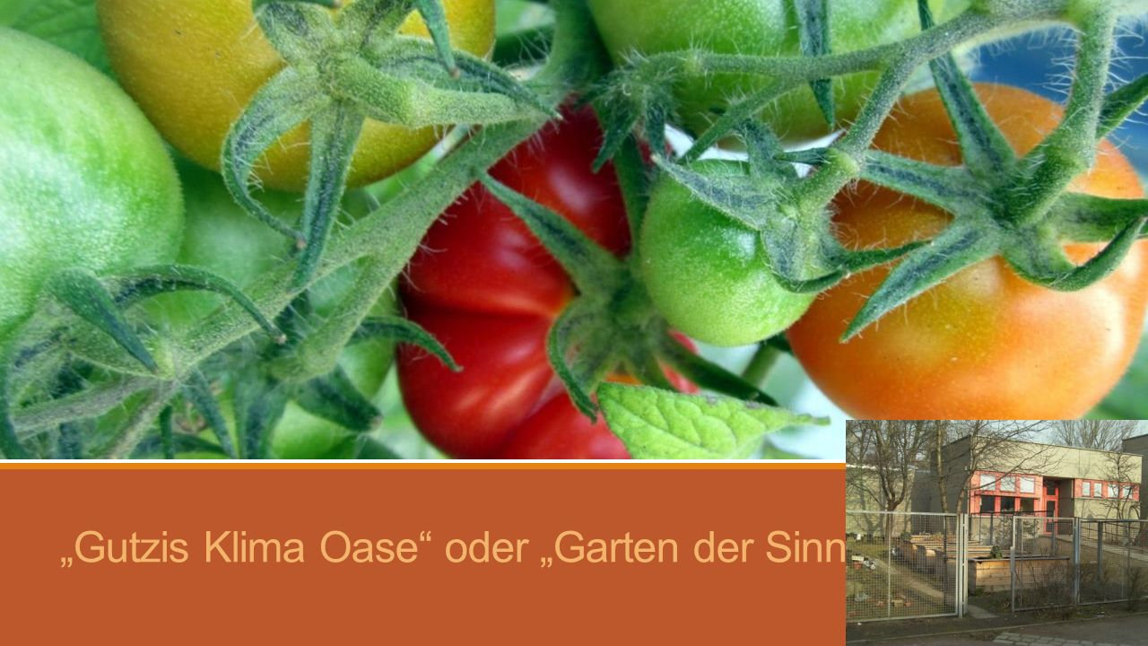 """""""Gutzis Klima Oase oder """"Garten der Sinne"""