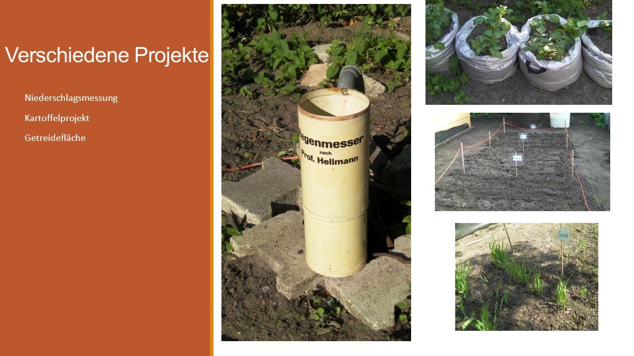 Verschiedene Projekte