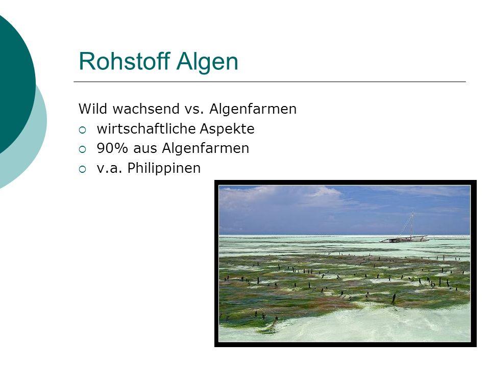 Rohstoff Algen Wild wachsend vs. Algenfarmen wirtschaftliche Aspekte