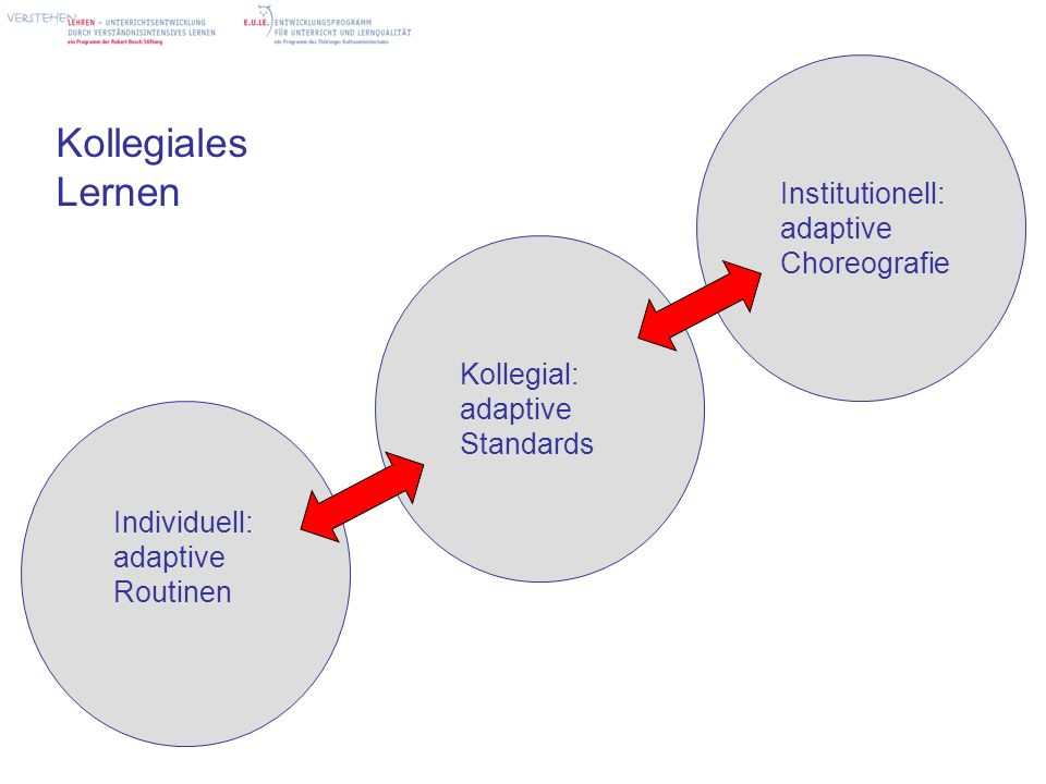 Kollegiales Lernen Institutionell: adaptive Choreografie