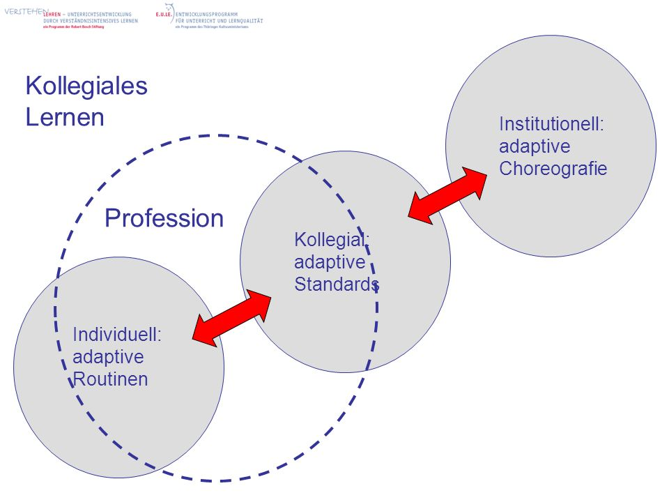 Kollegiales Lernen Profession Institutionell: adaptive Choreografie
