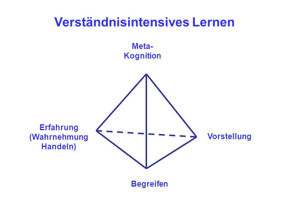 Erfahrung (Wahrnehmung Handeln) Verständnisintensives Lernen