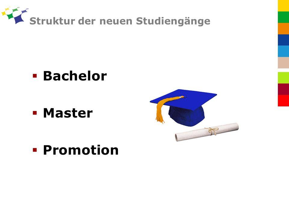 Struktur der neuen Studiengänge