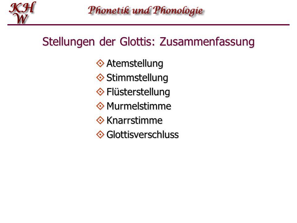 Stellungen der Glottis: Zusammenfassung
