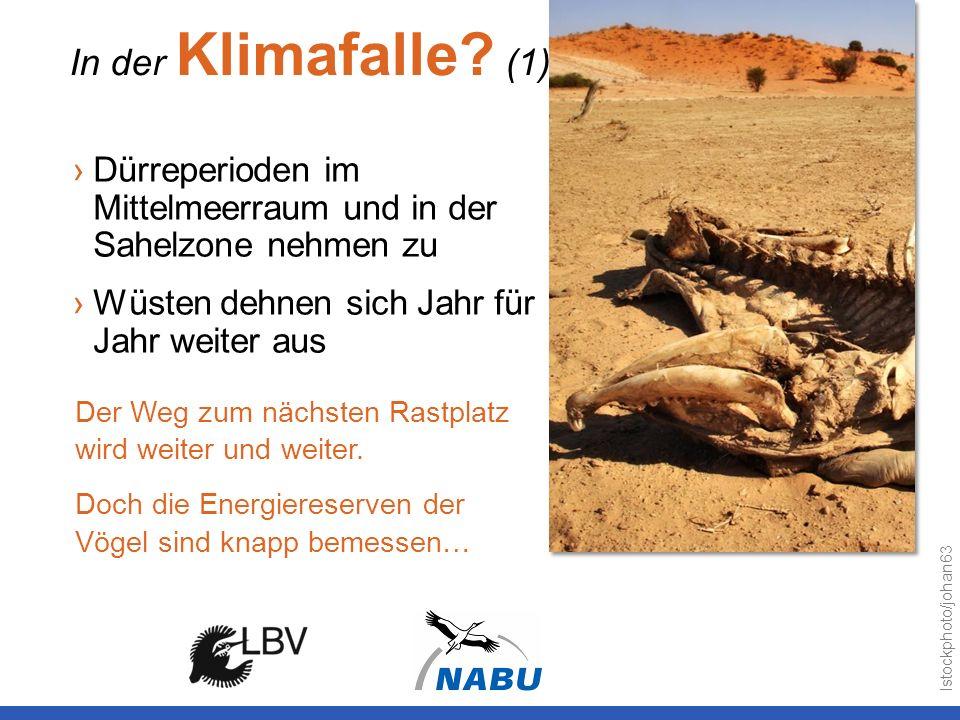 In der Klimafalle (1) Dürreperioden im Mittelmeerraum und in der Sahelzone nehmen zu. Wüsten dehnen sich Jahr für Jahr weiter aus.