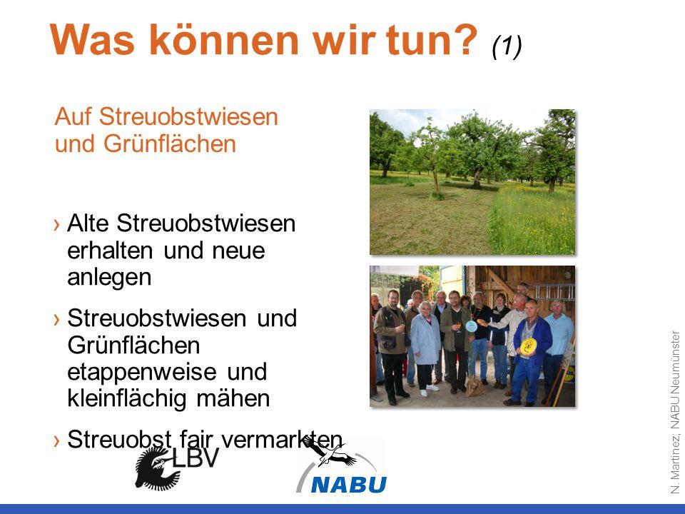 Was können wir tun (1) Auf Streuobstwiesen und Grünflächen
