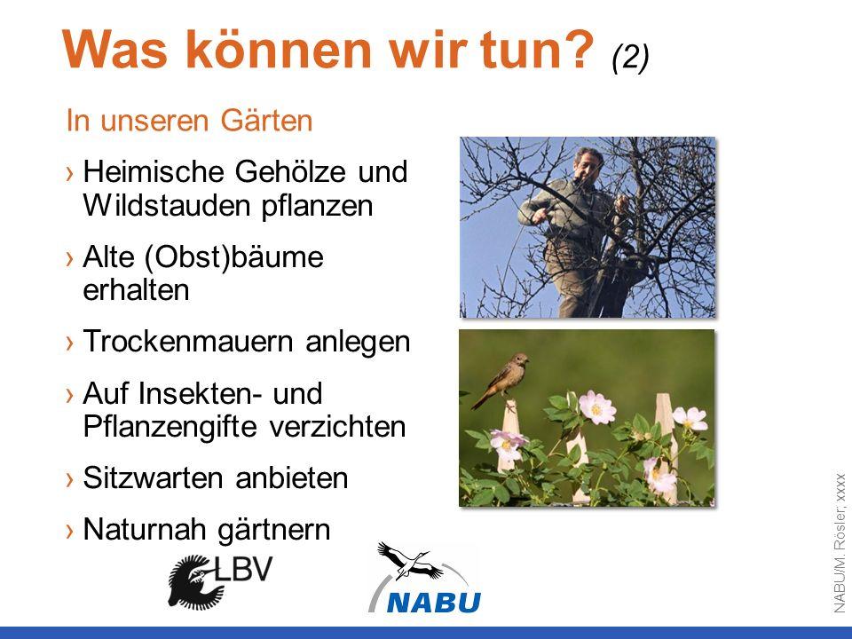 Was können wir tun (2) In unseren Gärten
